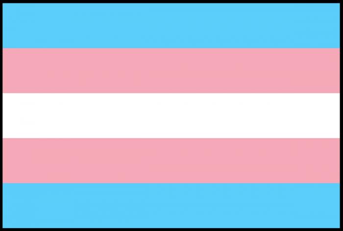 FLAG-TRANSGENDER